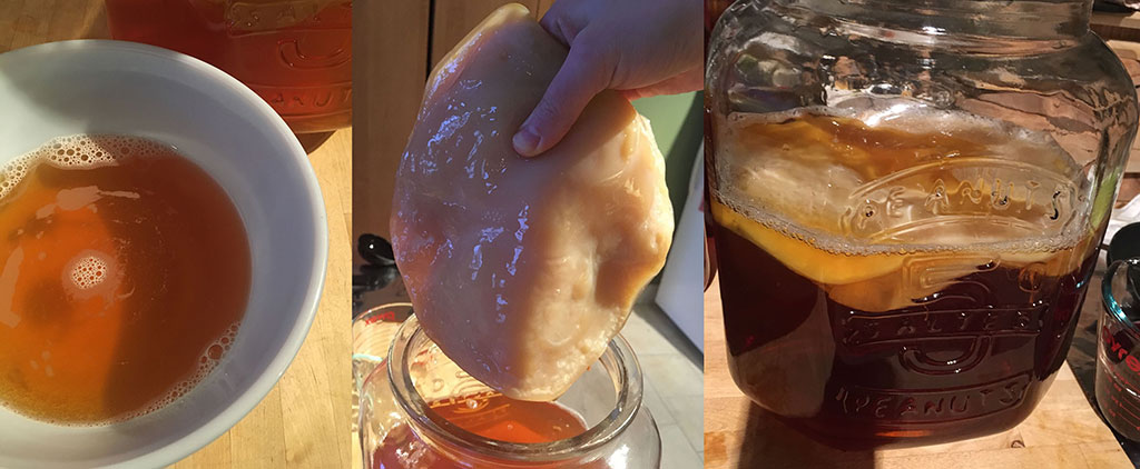 From left: Starter kombucha in bowl; SCOBY; first batch of kombucha ready to ferment.