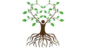 Healing Roots Therapy (Mental Health)